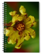 Flower 3 Spiral Notebook
