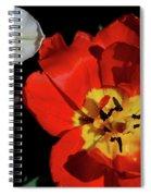 Flower 55 Spiral Notebook