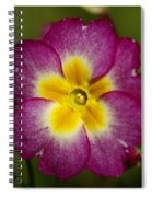 Flower 7 Spiral Notebook