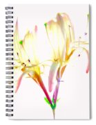 Flower 9315 Spiral Notebook