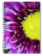 Flower And Droplets Spiral Notebook