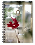 Flower And Window Spiral Notebook
