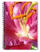 Flower Art Prints Pink Orange Lily Flower Giclee Baslee Troutman Spiral Notebook