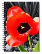 Flower As Art Spiral Notebook