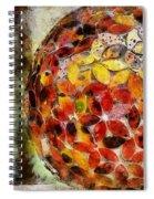 Flower Ball Spiral Notebook