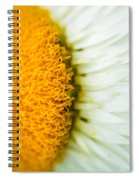 Flower Blossom 2 Spiral Notebook