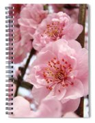 Flower Blossoms Art Spring Trees Pink Blossom Baslee Troutman Spiral Notebook