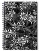 Flower Carpet Spiral Notebook