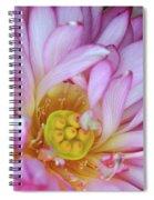 Flower Center Spiral Notebook