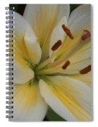 Flower Close Up 1 Spiral Notebook