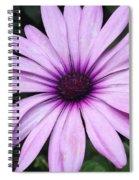 Flower Close Up 2 Spiral Notebook