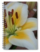 Flower Close Up 3 Spiral Notebook