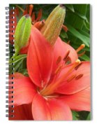Flower Close Up 4 Spiral Notebook