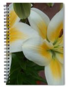 Flower Close Up 5 Spiral Notebook