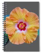 Flower Delight Spiral Notebook