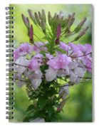 Flower Dew Beauty Spiral Notebook