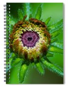 Flower Eye Spiral Notebook