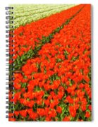 Flower Farm 2 Spiral Notebook