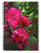 Flower Fest Spiral Notebook