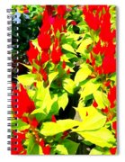 Flower Flames Spiral Notebook