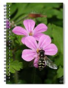 Flower Fly On Stinky Bob Spiral Notebook