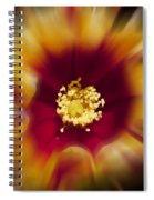 Flower Graphic Spiral Notebook