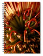 Flower Hawaiian Protea Spiral Notebook