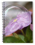 Flower In A Bubble Spiral Notebook