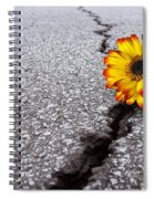 Flower In Asphalt Spiral Notebook