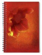 Flower In Red Spiral Notebook