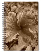 Flower In Sepia Spiral Notebook