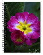 Flower In Spring Spiral Notebook