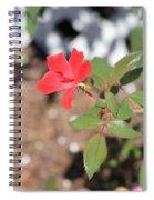 Flower In The Garden Spiral Notebook