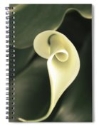Flower Lily Spiral Notebook