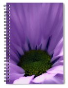 Flower Macro Beauty 4 Spiral Notebook