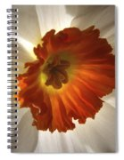 Flower Narcissus Spiral Notebook