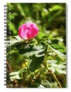 Flower Of Eglantine - 2 Spiral Notebook