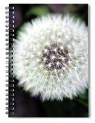 Flower Of Flash Spiral Notebook