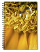 Flower Of The Sun Spiral Notebook