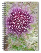 Flower Photograph Spiral Notebook
