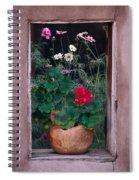 Flower Pot In Window Spiral Notebook