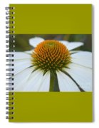 Flower Power Sacred Geometry Spiral Notebook