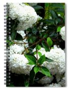 Flower Snow Balls Spiral Notebook