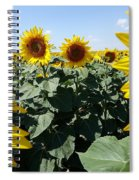 Flower Sunflower,yellow Flower, Spiral Notebook