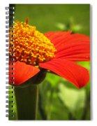 Flower Tower Platform Spiral Notebook