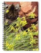Flower Wood And Rock Spiral Notebook