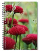 Flower1 Spiral Notebook