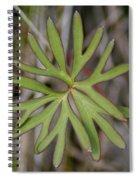 Flowerantlers Spiral Notebook