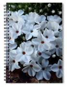 Flowering At 13,000 Feet Spiral Notebook