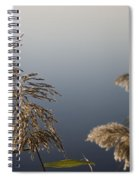 Flowering Cane Plant Spiral Notebook
